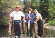 August 2001 Spring run Chinook salmon.